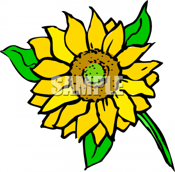 free clip art sunflower. Royalty Free Sunflower Clipart