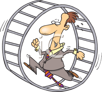 how to get a hamster wheel in animal