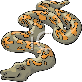 Pictures Of Snakes To Colour In. reptiles, color, colour