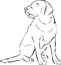 Hunting Vest Coloring Page Coloring Pages