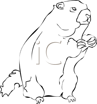 120699617749 in addition Brushing Teeth Clipart in addition Groundhog 312041 as well Index besides Little Monkey Swinging On The Tree Image 10928700. on beaver box