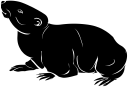 Rodent Clipart