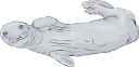 Fish and Sealife Clipart