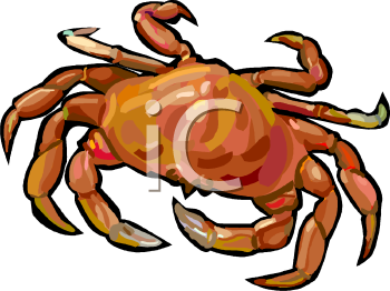 Currently popular fish and sea life clipart