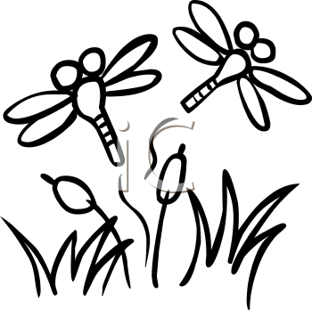 cute dragonfly clipart. dragonfly clipart 62518 by