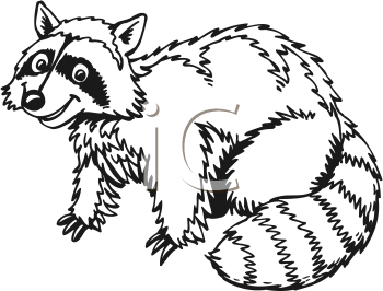 Royalty Free Raccoon Clip art, Mammal Clipart Raccoon Face Clip Art Black And White