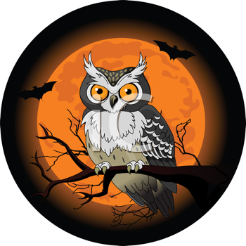 free clip art owl. Royalty Free Bird Clipart