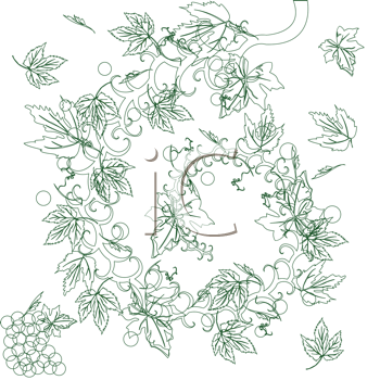 grape vine clipart. Royalty Free Vine Clipart