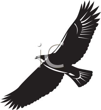 eagle silhouette png H...