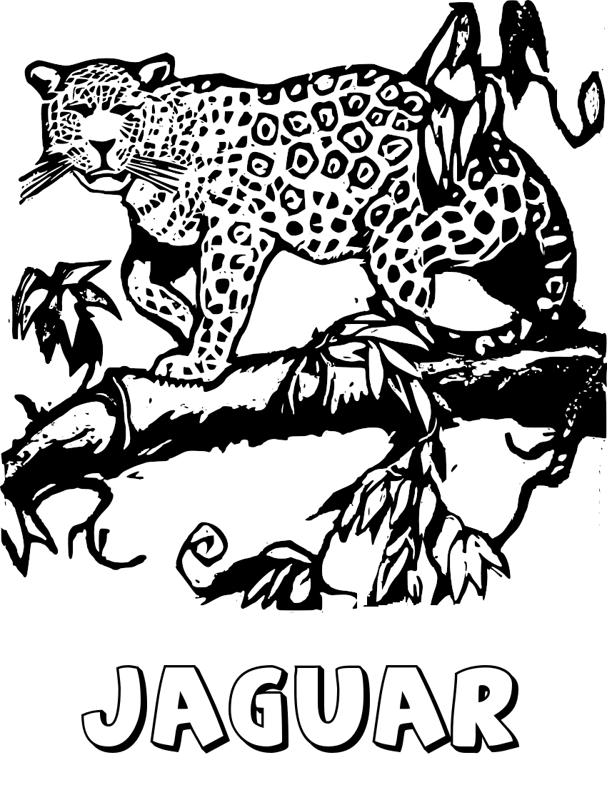 free jaguar clipart 1 page of public domain clip art
