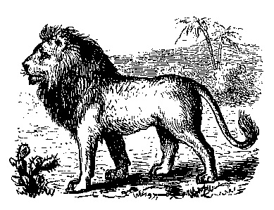 Free Black and White Lion Clipart