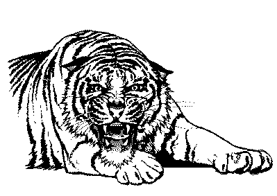 Free Black and White Tiger Clipart