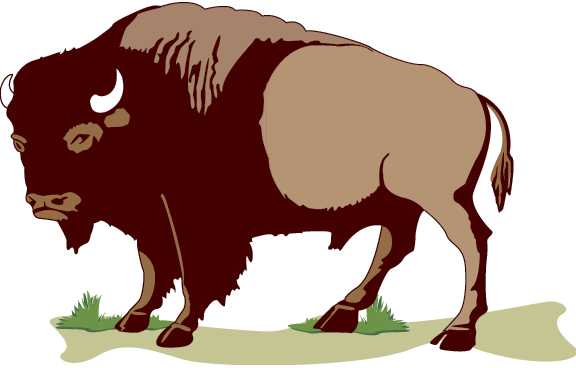 Free Bison Clipart