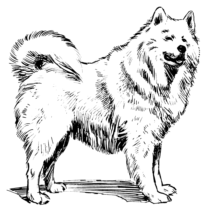 Free Black and White Dog Clipart