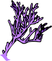Free Coral Clipart