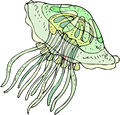 Free Colorful Jellyfish Clipart