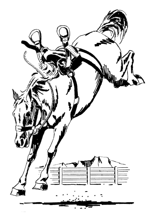 Free Black and White Horse Clipart