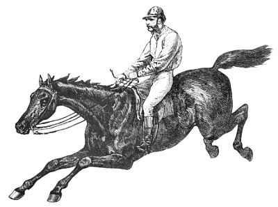 Free Endurance Riding Clipart