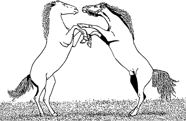 Free Horse Fighting Clipart