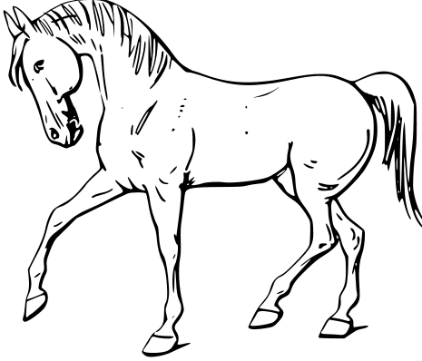 Free Andalusian Stallion Clipart