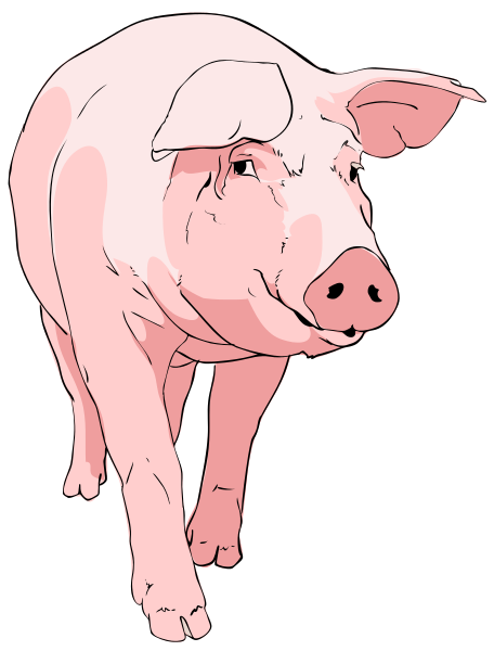 Free Walking Pig Clipart