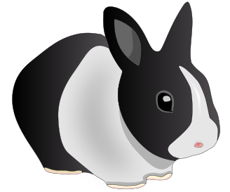 Free Holland Rabbit Clipart