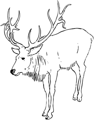 Free Black and White Reindeer Clipart