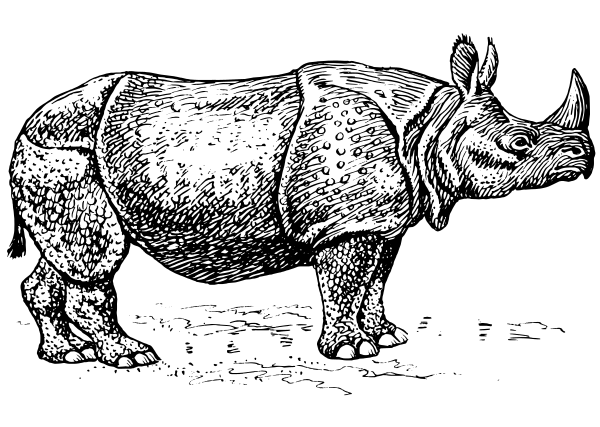 Free Black and White Rhinoceros Clipart