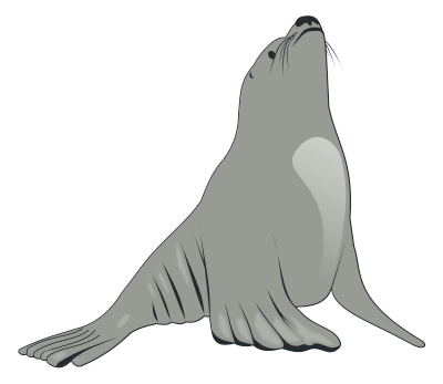 Free Black Sea Lion Clipart