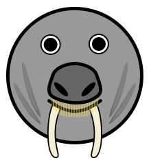 Free Walrus Cartoon Clipart