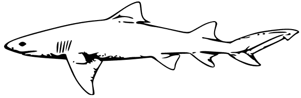 Free Lemon Shark Clipart