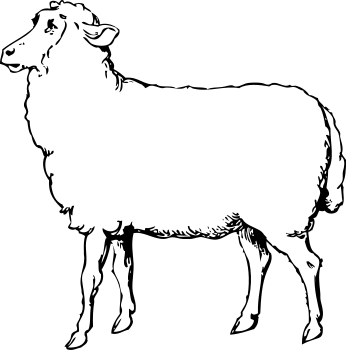 Free Black and White Sheep Clipart