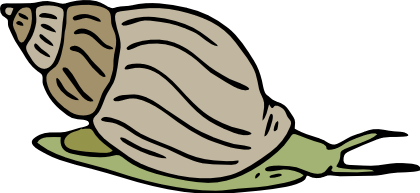 Free Snail Clipart