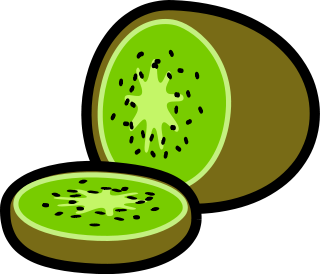 Free Kiwi Fruit Clipart