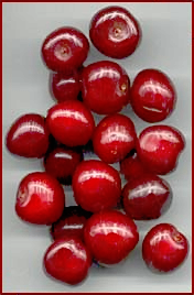 Free Cherry Clipart