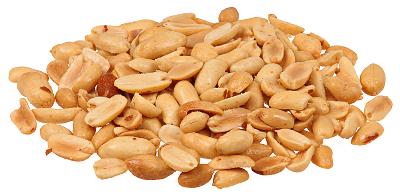 Free Nuts Clipart