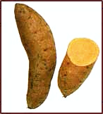 Free Sweet Potato Clipart